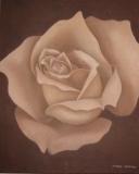 roosje bruin